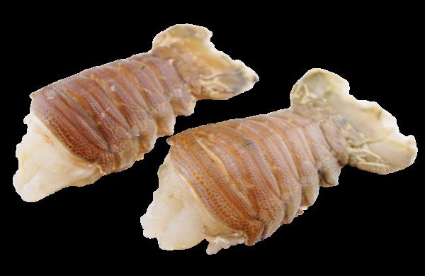 Bärenkrebsschwanz mit Schale 1000 g